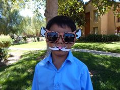Tiger Glasses, Wild Cat Glasses, Cat Glasses | Stache Me If You Can, Moustaches, Mustaches, Photo Booth