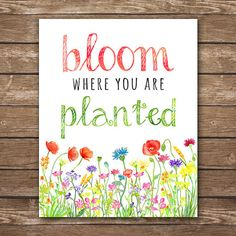 INSTANT DOWNLOAD. Printable Bloom Where You Are Planted, watercolor flowers, inspirational quotes, motivational quotes