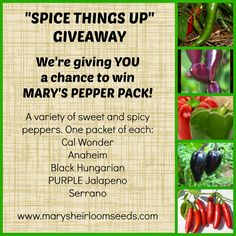 Another great giveaway is live on my blog... Stop by the enter to win.