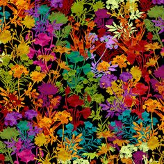 In the Beginning Dreamscapes 2 Rainbow Black Garden | |