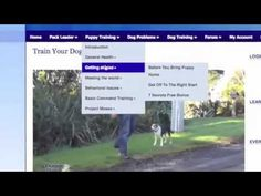 Tour Of The Online Dog Trainer For Puppy Owners - http://www.pennystocksniper.reviews/pss/tour-of-the-online-dog-trainer-for-puppy-owners/