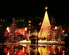 Christmas lights I cant wait. I love Christmas.