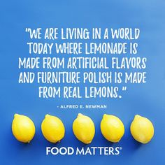 Food Matters uncovers the secrets of natural health to help you achieve optimum wellness! Discover inspiring documentaries, wellness guides, nutrition tips, healthy recipes, and more. Great Quotes, Funny Quotes, Food Quotes, Nutrition Quotes, Health Quotes, Nutrition Club, Nutrition Activities, Nutrition Guide, Health Facts