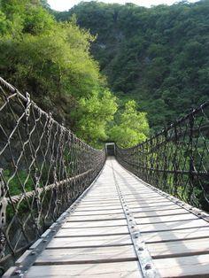 Clare Leighton - for The Bridge of San Luis Rey   A N T I Q U E ...