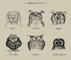 Owl-dee here's ye coffee.