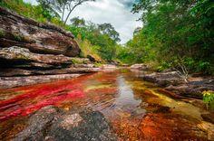 Colombia el rio más hermoso del mundo ooo Cc