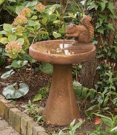 Squirrel Birdbath | Birdbaths, Birdfeeders and Birdhouses,Birdbaths | Charleston Gardens® - Home and Garden Collection Classic outdoor and garden furnishings, urns & planters and garden-related gifts