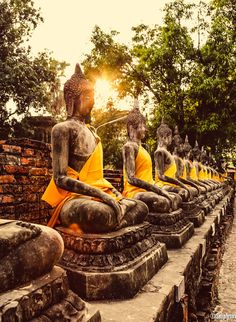 500px / Enlightened by Simply Siri - Ayuthaya, Thailand