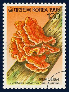 Mushroom Series(3nd), Laetiporus sulphureus var. miniatus Imaz, Mushroom, Orange, Deep Green, 1995 03 31, 버섯시리즈(세번째묶음), 1995년 3월 31일, 1807, 붉은덕다리버섯, Postage 우표