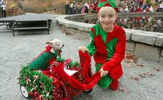 AJC Events: Reindog Parade, The Happenstance And More   WABE 90.1 FM
