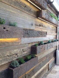 Vertical garden with underlit highlights Vertical Garden Design, Fence Design, Backyard Walkway, Loft Interiors, Outdoor Restaurant, Modern Fence, Plant Wall, Types Of Houses, Architecture Details