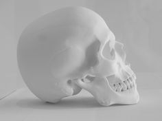 Walker Art, Minneapolis, Skull, Museum, Sculpture, Sculpting, Statue, Museums, Sculptures