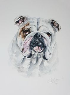Dog portrait in watercolour original and by wetnosewatercolours