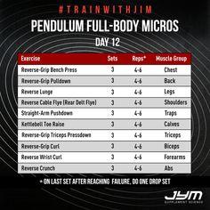 Pendulum Full-Body Micros