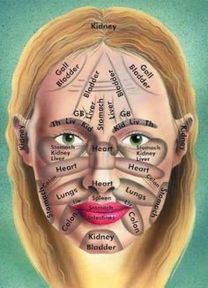 Lymphatic area in the face