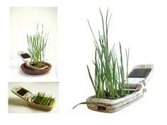 cell phone grass :)