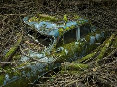 Paradise Parking: Automobiles Reclaimed by Nature by Paris based photographer #Peter_Lippmann is a photographic series (and forthcoming book release) featuring the awesome power of nature busy at work… reabsorbing the crap we not-so-smart monkeys decide to leave behind.