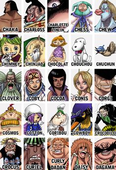 One Piece ~ characters with C ~