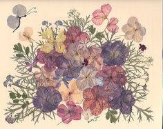 304 best dried and pressed flower designs images on pinterest impatients mightylinksfo