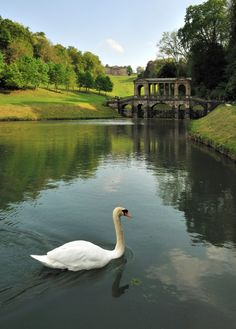 Prior Park | Bath | Palladian Bridge