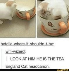 Image result for hetalia where it shouldn't be <<< this is precisely where Hetalia should be