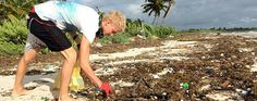 Picking up trash and keeping our oceans clean 7 Ways To Be A More Responsible Diver Pick Up Trash, Marine Conservation, Oceans, Kenya, No Response