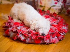How to Make a No-Sew Pet Bed >> http://www.diynetwork.com/decorating/how-to-make-a-no-sew-pet-bed/pictures/index.html?soc=pinterest