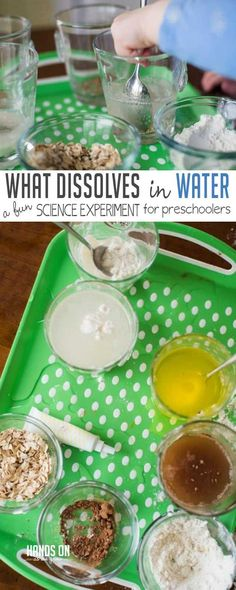 Find out what dissolves in water! This is a fun experiment for preschoolers to predict and observe what will dissolve and disappear in water and what won't. preschool Learn What Dissolves in Water with a Preschool Science Experiment Kid Science, Water Science Experiments, Science Week, Science Experiments For Preschoolers, Preschool Science Activities, Summer Science, Kindergarten Science, Science Fair Projects, Science Lessons