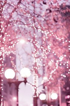 Pink Christmas lights in the city