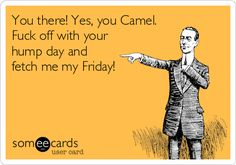 You there! Yes, you Camel. Fuck off with your hump day and fetch me my Friday!