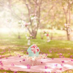 Kelli Homeniuk Fotografia Profissional Whats: (41)99729-6585 #BigCupcake #CakeSmash #11meses #preaniversário #bolo #SmashTheCake #KelliHomeniuk #Curitiba #Ideias #coresbebê #Externo #menina #princesa #Curitiba #Jardim #Diferente #Jardim #borbolatas #passarinho #Flores #laguinho #Ensaio l #bebêPropaganda #esmagando #princesa #flores #fotografaInfantil #fotografadebebês #pordosol #Familia #especializada #Anjo #bolhas