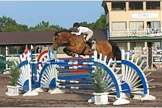 Horse Shows in the Sun: Cavalier Classic - 13246 Commonwealth Parkway, Culpeper, VA 22701, Wed July 9 - Sun July 13, no charge Wed-Sat, Sun admission $5