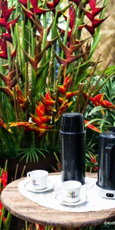 Hot Colombian coffee - at the Jardin Botanico, Medellin.