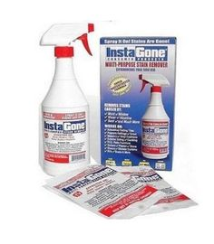 Remove Mold Stains On Pinterest Remove Mold Stains And