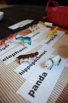 Using animal figurines to teach new words!