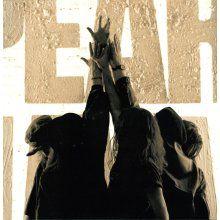"Pearl Jam "" Ten "" On Vinyl - Madcap Music and More.com"