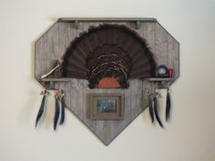 1000 images about turkey mounts on pinterest beard for Turkey fan mount template