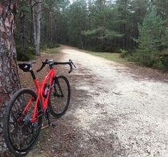 "Brève #02 #gravel #bike #gravelbike #fontainebleau #opentheroad #caminade Riding Gravel bike is about riding almost everywhere. Joins us January 24th in Fontainebelau forest South of Paris for ""Gravel Grand Paris"" #02 gathering. Find all details on Caminade Facebook events page. #gravel #bike #gravelbike #fontainebleau #opentheroad #caminade... Brève #02 #gravel #bike #gravelbike #fontainebleau #opentheroad #caminade contact@caminade.eu (Caminade) : December 14 2015 at 10:53PM…"
