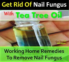 Nail Fungus: How To Get Rid Of Nail Fungus With Tea Tree Oil