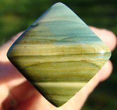 Gary Green petrified wood jasper