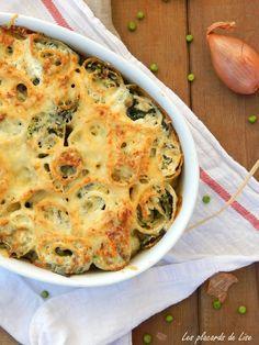 lasagne roulées aux légumes verts et ricotta