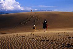 Horse riding on sand dunes, Médanos de Coro, Estado Falcón, Venezuela