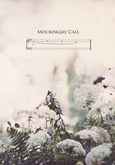 #TheHungerGames Mockingjay Call