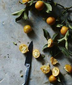citruses // Matt Armendariz