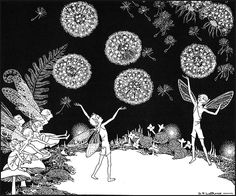 Illustration for Fairy Circus - Dorothy Lathrop