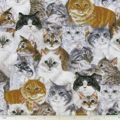 Packed Cats Cotton Calico Fabric