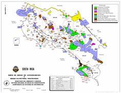 Estado de la diversidad biológica de los árboles y bosques en ...