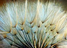 Photography - Etsy Art - Page 10