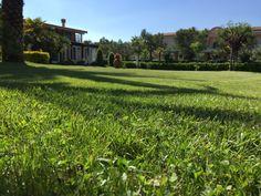 Un rilassante tuffo nel verde del Centro Vacanze De Angelis