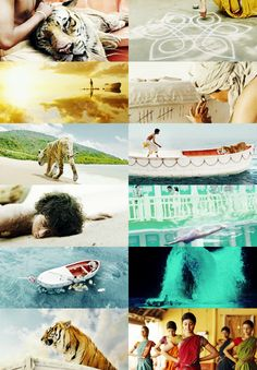 Life of Pi  Just watched this and it was great!